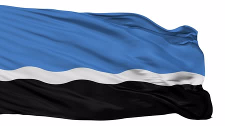 estandarte : Mustvee Jogeva County flag, city of Estonia, realistic animation isolated on white seamless loop - 10 seconds long (alpha channel is included)