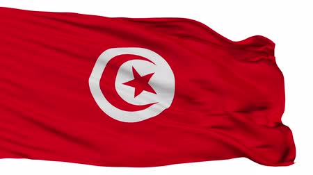 tunisia : Tunisia flag, city of Tunisia, realistic animation isolated on white seamless loop - 10 seconds long (alpha channel is included)