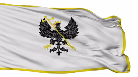 bab : Alex K Chernihiv prapor  flag, city of Ukraine, realistic animation isolated on white seamless loop - 10 seconds long (alpha channel is included)