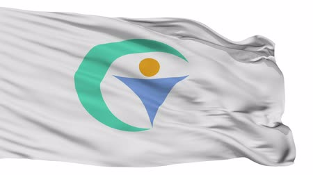 acetinado : Gujo flag, Gifu prefecture, realistic animation isolated on white seamless loop - 10 seconds long (alpha channel is included)