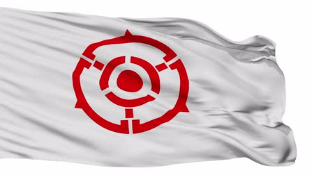 знак : Hanno flag, Saitama prefecture, realistic animation isolated on white seamless loop - 10 seconds long (alpha channel is included) Стоковые видеозаписи
