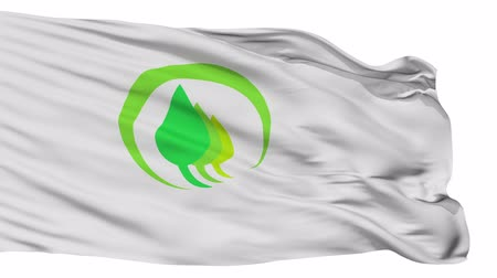 acetinado : Midori flag, Gunma prefecture, realistic animation isolated on white seamless loop - 10 seconds long (alpha channel is included)