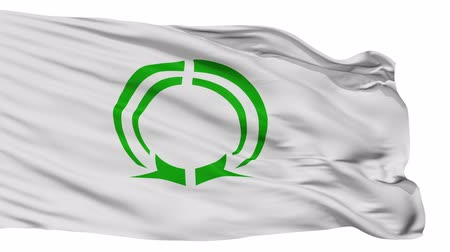 osaka : Matsubara flag, (osaka) prefecture, realistic animation isolated on white seamless loop - 10 seconds long (alpha channel is included) Stock Footage