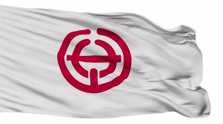 výřez : Sayama flag, Saitama prefecture, realistic animation isolated on white seamless loop - 10 seconds long (alpha channel is included)