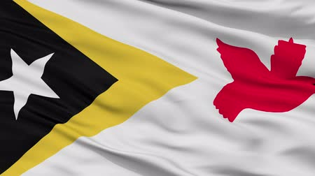 east timor : Baucau closeup flag, city of East Timor, realistic animation seamless loop - 10 seconds long Stock Footage