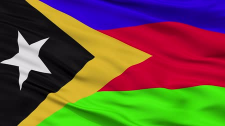 east timor : Bobonaro closeup flag, city of East Timor, realistic animation seamless loop - 10 seconds long Stock Footage