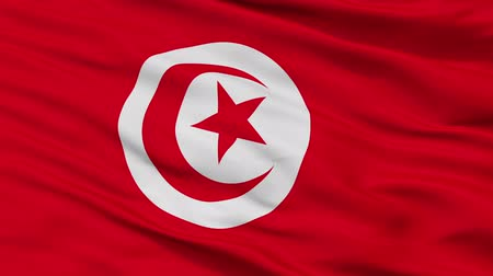 tunisia : Tunisia closeup flag, city of Tunisia, realistic animation seamless loop - 10 seconds long