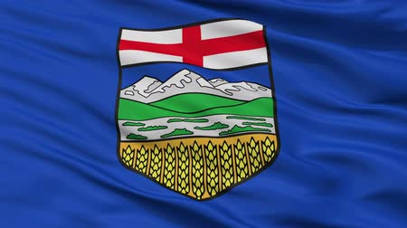 Észak amerika : Alberta closeup flag, city of Canada, realistic animation seamless loop - 10 seconds long