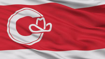 vráska : Calgary Alberta closeup flag, city of Canada, realistic animation seamless loop - 10 seconds long