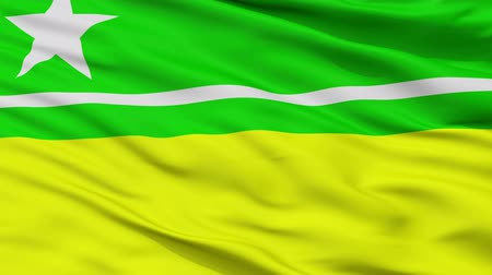 boa : Boa Vista  closeup flag, city of Brasil, realistic animation seamless loop - 10 seconds long