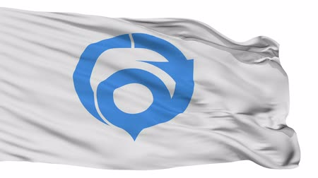 Hannan flag, Osaka prefecture, realistic animation isolated on white seamless loop - 10 seconds long (alpha channel is included)