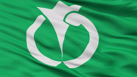 Anan close up flag, Tokushima prefecture, realistic animation seamless loop - 10 seconds long