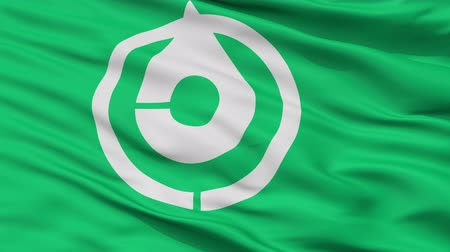 Chikushino close up flag, Fukuoka prefecture, realistic animation seamless loop - 10 seconds long