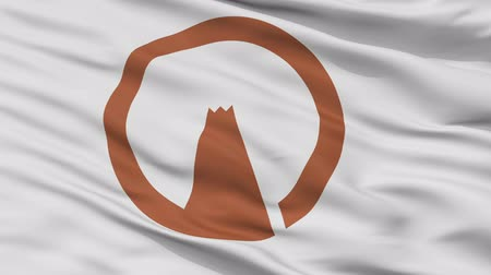 Gotenba close up flag, Shizuoka prefecture, realistic animation seamless loop - 10 seconds long