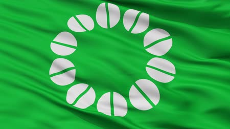 Ito close up flag, Shizuoka prefecture, realistic animation seamless loop - 10 seconds long