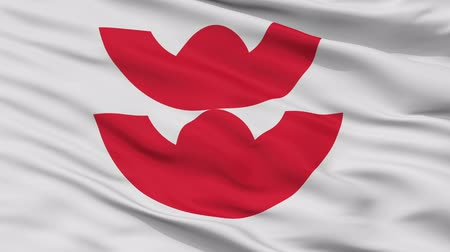 Izumo close up flag, Shimane prefecture, realistic animation seamless loop - 10 seconds long Dostupné videozáznamy