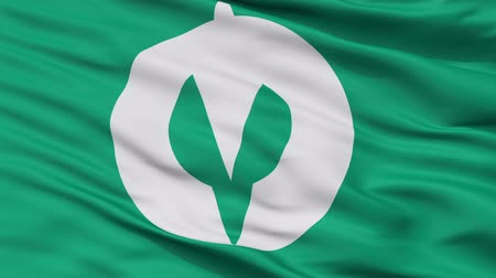 prefecture : Kakuda close up flag, Miyagi prefecture, realistic animation seamless loop - 10 seconds long