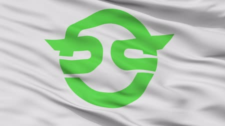 Kasai close up flag, flag prefecture, realistic animation seamless loop - 10 seconds long