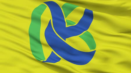 insignie : Kasama close up flag, Ibaraki prefecture, realistic animation seamless loop - 10 seconds long