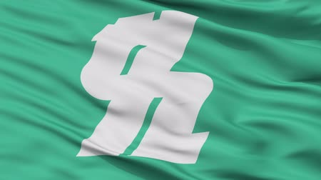 Kashiwa close up flag, Chiba prefecture, realistic animation seamless loop - 10 seconds long