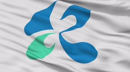 Kinokawa close up flag, Wakayama prefecture, realistic animation seamless loop - 10 seconds long