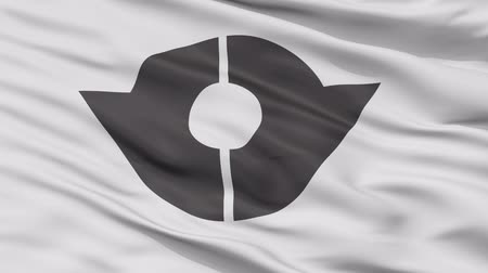 Kita close up flag, Tokyo prefecture, realistic animation seamless loop - 10 seconds long Stok Video