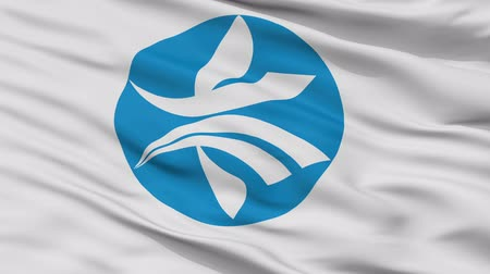 Kizugawa close up flag, Kyoto prefecture, realistic animation seamless loop - 10 seconds long
