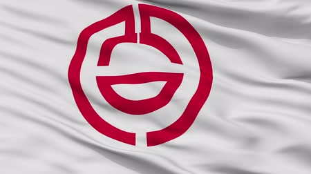 Kumagaya close up flag, Saitama prefecture, realistic animation seamless loop - 10 seconds long Stok Video