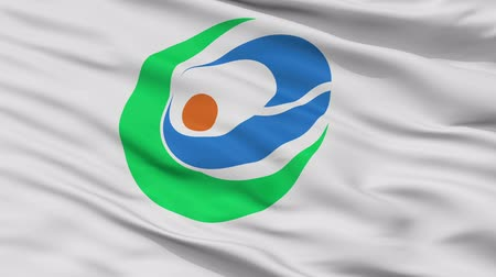 Kunisaki close up flag, Oita prefecture, realistic animation seamless loop - 10 seconds long