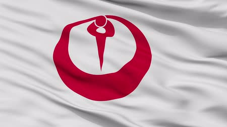 Maizuru close up flag, Kyoto prefecture, realistic animation seamless loop - 10 seconds long