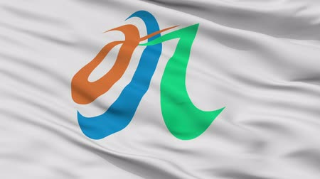 Minamikyushu close up flag, Kagoshima prefecture, realistic animation seamless loop - 10 seconds long Stok Video