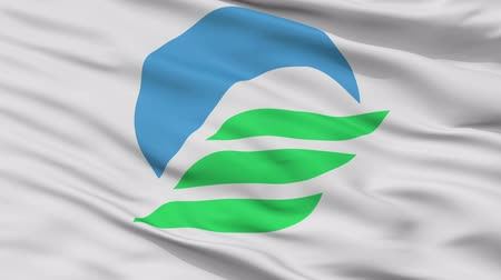 Mitoyo close up flag, Kagawa prefecture, realistic animation seamless loop - 10 seconds long