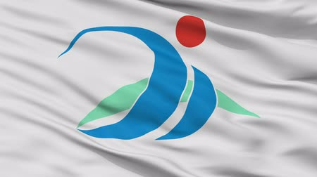 Miyakojima close up flag, Okinawa prefecture, realistic animation seamless loop - 10 seconds long Stok Video