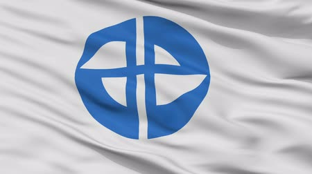 Miyoshi close up flag, Aichi prefecture, realistic animation seamless loop - 10 seconds long
