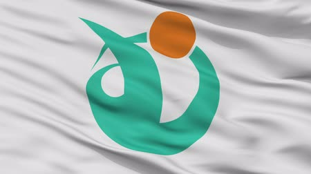 Murakami close up flag, Niigata prefecture, realistic animation seamless loop - 10 seconds long