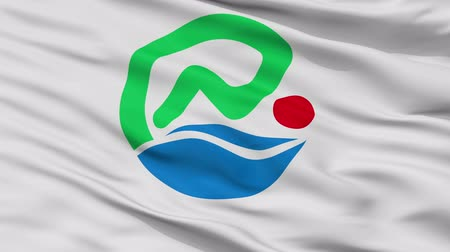 Nanjo close up flag, Okinawa prefecture, realistic animation seamless loop - 10 seconds long Stok Video