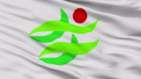 Nantan close up flag, Kyoto prefecture, realistic animation seamless loop - 10 seconds long