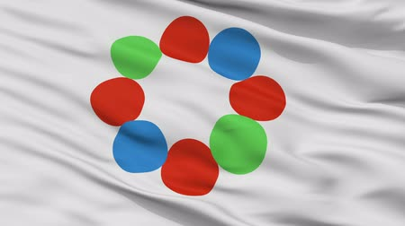 insignie : Nanto close up flag, Toyama prefecture, realistic animation seamless loop - 10 seconds long Dostupné videozáznamy