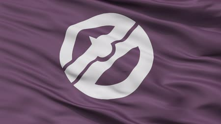 Natori close up flag, Miyagi prefecture, realistic animation seamless loop - 10 seconds long
