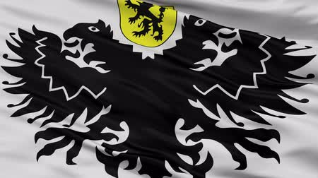 plovoucí : Lo Reninge closeup flag, city of Belgium, realistic animation seamless loop - 10 seconds long