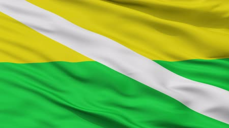 césar : Chiriguana  closeup flag, city of Colombia, realistic animation seamless loop - 10 seconds long