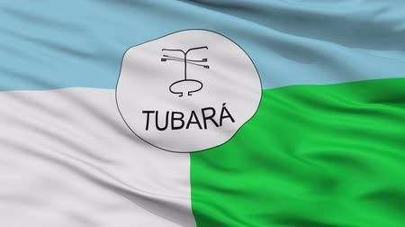 Колумбия : Tubara  closeup flag, city of Colombia, realistic animation seamless loop - 10 seconds long