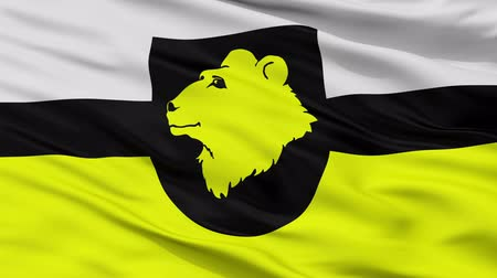 parrocchia : Otepaa Parish closeup flag, city of Estonia, realistic animation seamless loop - 10 seconds long
