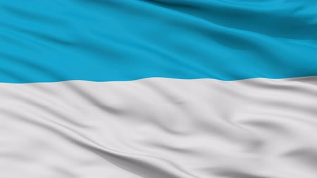 estland : Viljandi closeup flag, city of Estonia, realistic animation seamless loop - 10 seconds long
