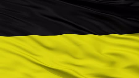 münchen : Munich  closeup flag, city of Germany, realistic animation seamless loop - 10 seconds long