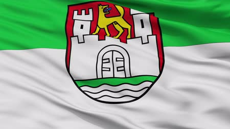 independência : Wolfsburg closeup flag, city of Germany, realistic animation seamless loop - 10 seconds long