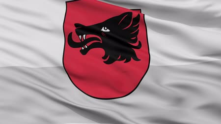 enrugada : Balvi closeup flag, city of Latvia, realistic animation seamless loop - 10 seconds long