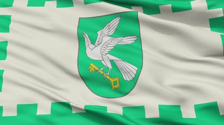 Литва : Pagegiai closeup flag, city of Lithuania, realistic animation seamless loop - 10 seconds long