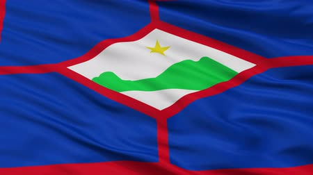 eustatius : Sint Eustatius closeup flag, city of Netherlands, realistic animation seamless loop - 10 seconds long Stock Footage