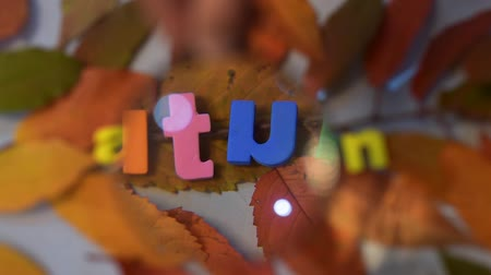 cabeçalho : Word autumn through magnifying glass. Colorful letter on yellow leaves.